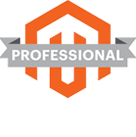 Professional Magento Solutions Partner